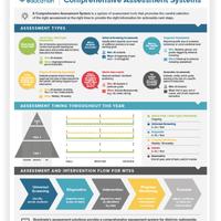 Comprehensive Assessment
