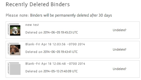 screenshot of 'Recently Deleted Binders' page