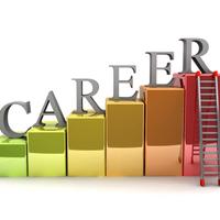 career 7