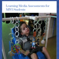 Learning Media Assessment MIVI