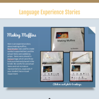 Language Experience Stories for Students with Disabilities