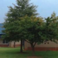 Hallmark 5 - Safe and Positive School Culture