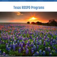 Texas RDSPD Programs