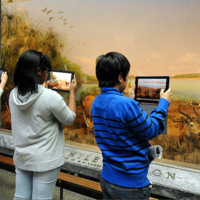 Learning with Museums