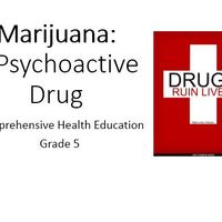 Marijuana--A Psychoactive Drug