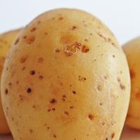 You Say Potato, I Say Patato: The Real Score Between Telemarketi
