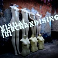 Visual Merchandising Curriculum