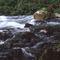 Hydrology & Environmental Service