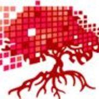 Tuleviku Õpetaja koolitusprogrammi Digitaalne arengumap