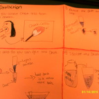 Virtual Science Notebook - Laura Crandall