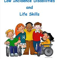 LID - Low Incidence Disabilities
