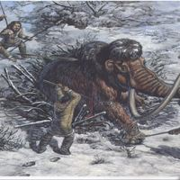 Ice Age research project