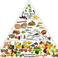 Nutrition lessons ideas, information and resources