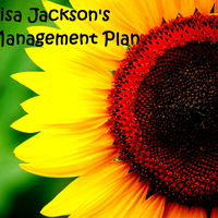 Lisa Jackson's Management Plan