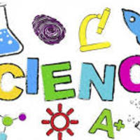 JCS 6th Grade Science