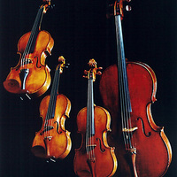 History of String Instruments
