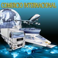 COMERCIO INTERNACIONAL (Curso Taller)