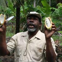 Is Fair Trade Fair?