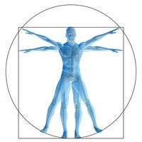 Human Physiology LiveBinder Presentation