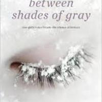 7th Grade Unit 4: Between Shades of Gray