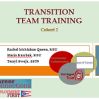 Transition Team Training Cohort 2
