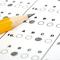 Observation, Documentation & Assessment Notebook