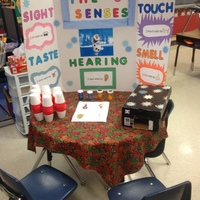Showcase of Inquiry - Innovation in Education