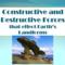 Constructive and Destructive Forces / 8th Grade