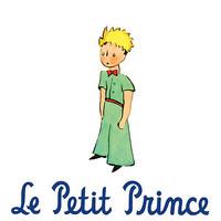 Le Petit Prince Unit Plan