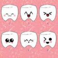 Sistemas Y Tecnolog��a Basados en la Odontolog��a
