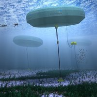 Renewable Energy from the Oceans