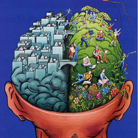 Chapter 10 Thinking and Language