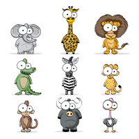 Animal Classes