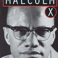 S. Hamilton The Autobiography of Malcolm X Literary Analysis