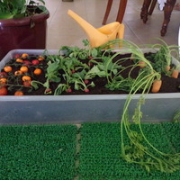 Early Years Learning Unit - Farm Produce