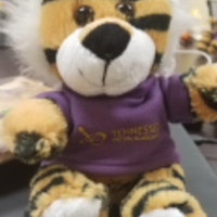 TNVA Tiger Family Resources 2018-2019