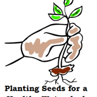 Planting Seeds Project