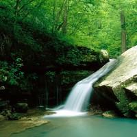 Copy of Arkansas Adventure