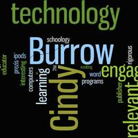 Cindy Burrow's Technology Portfolio