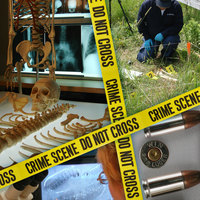 Sample Student Forensic Science 2012