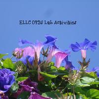 ELLC 0326