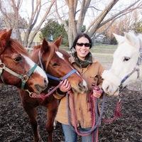 Applied Equine Behaviour Research Portfolio