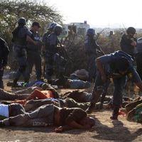 owen and rodneys apartheid project