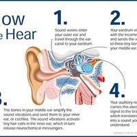 Deaf Ed Resources