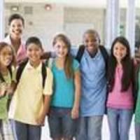 Middle School Developmental Project