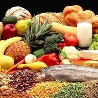 Nutrition, a path to wellness for fifth grade