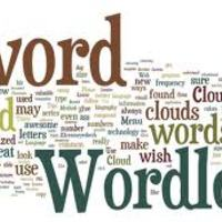 Camp 21: Field Guide Word Clouds