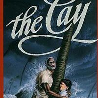The Cay Lesson Plan