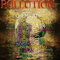 In this live binder you will gain information about the large amounts of pollution in China.