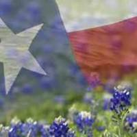 Texas Bluebonnet Books 2014-2015